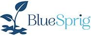 BlueSprig-Logo