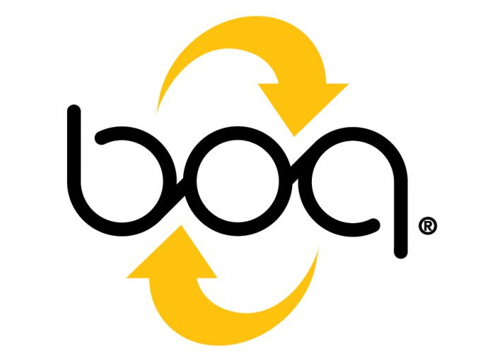 BOA uses Power BI dashboards from Blue Margin