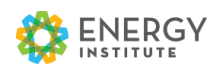Energy Institute