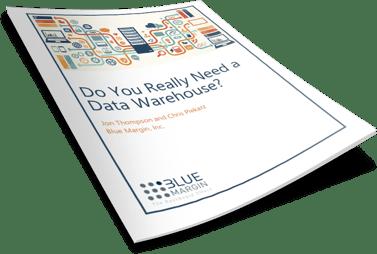 Do You Really Need a Data Warehouse?
